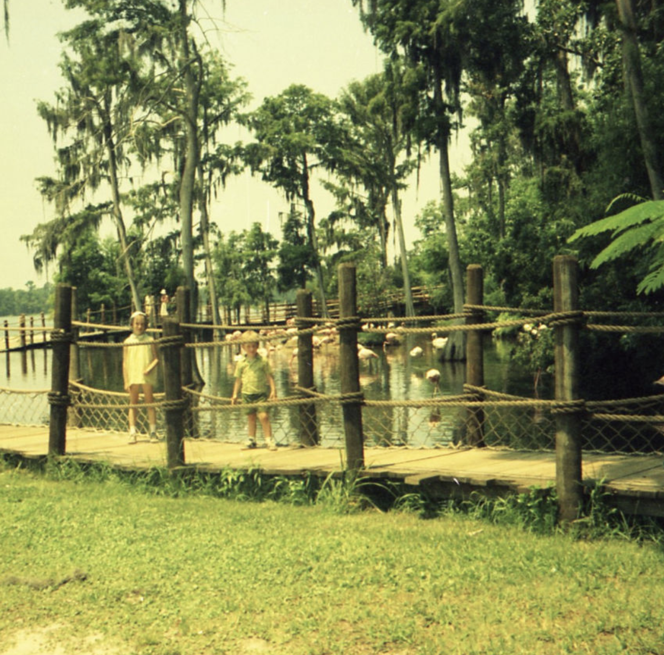 Shuttered Island: Disney's Mysterious Abandoned Attraction